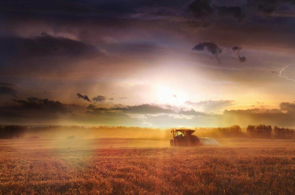 CRE Agriculture Photo Contest Winner - Darcie Goudreau